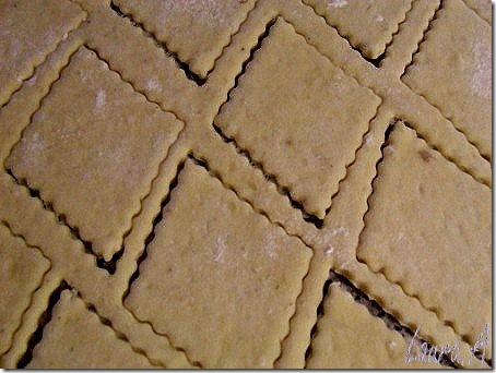 gogosi-sarate-cu-cartofi (5)