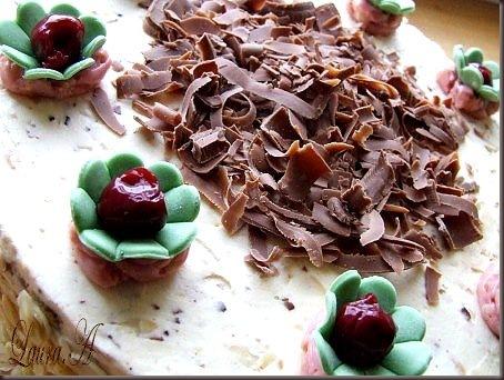 tort cu ciocolata si cirese (4)