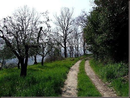 Morgnano, Umbria (noua noastra casa) detalii