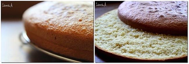 preparare-tort-mousse-ricotta-frisca (3)11