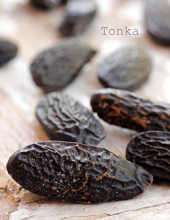 Pastai Tonka