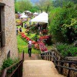 Targ de plante si flori – Sant'Anatolia di Narco