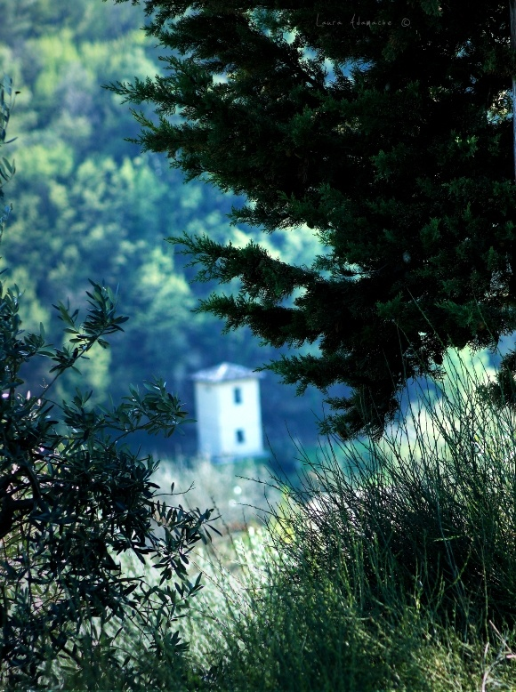 Detaliu turn Morgnano