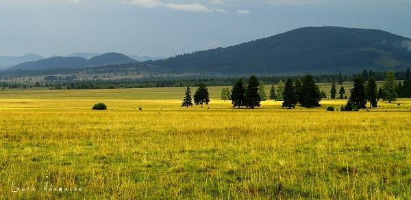 Peisaj montan din Romania