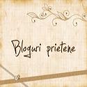 Bloguri preferate