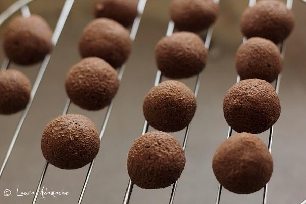 Bomboane de ciocolata si  nuca de cocos pe gratar