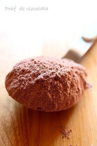 Homemade instant chocolate