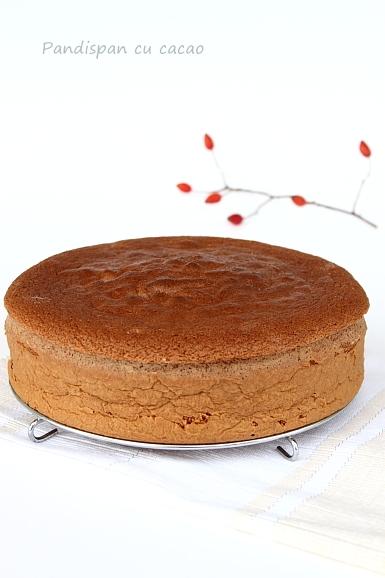 Pandispan de cacao - blat de tort