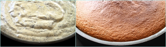 Tort cu crema de portocale si ciocolata alba - blat de tort in forma