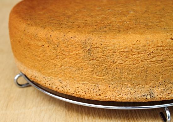 Tort cu crema de portocale si ciocolata alba - pandispan cu mac