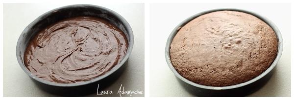 Tort de ciocolata si crema de lapte - aluat pandispan de ciocolata