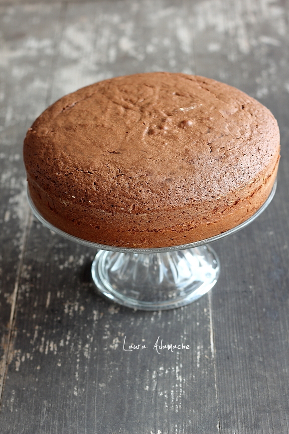 Tort de ciocolata si crema de lapte - pandispan de ciocolata