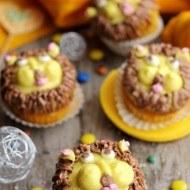 Cupcakes Leul Curajos