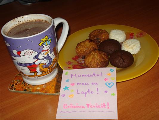 biscuiti-fulgi-ovaz (Custom)