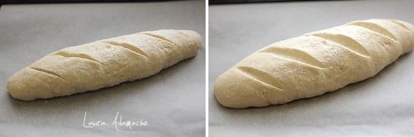 Preparare paine rapida
