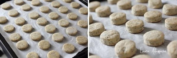 Biscuiti fragezi cu mac detaliu preparare