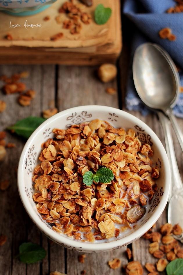 Cereale copate cu fructe uscate in bol cu lapte