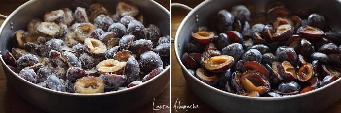 preparare-gem-prune