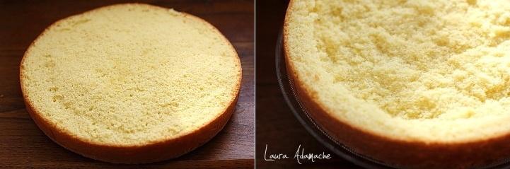 Tort Mimoza asamblare