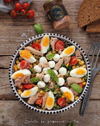 salata-primavara-ton-lotka