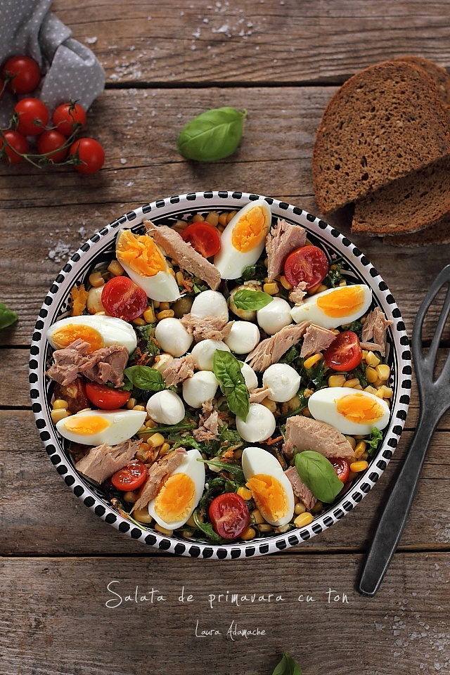 Salata de primavara cu ton Lotka prezentare