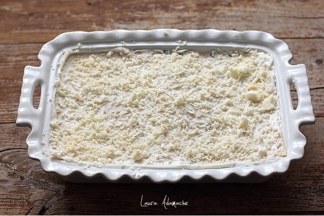 tava cu lasagna